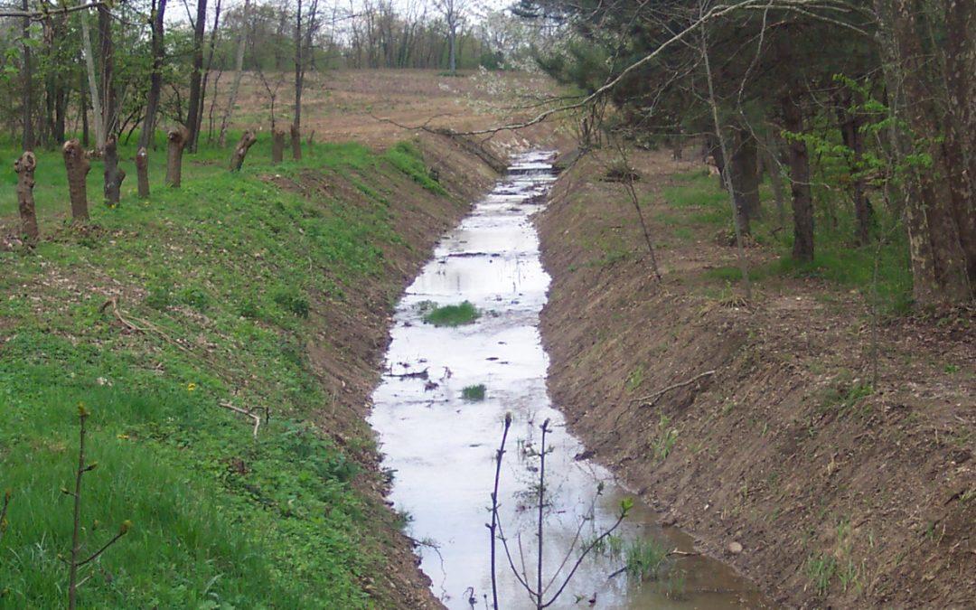 Esempi di sistemazione ambientale lungo i corsi d'acqua da noi gestiti